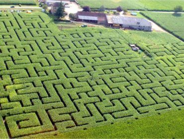 Salviac, France, Maze, Corn Maze, Labyrinth, Labrynth, Things to do in Salviac, Things to see in Salviac, Lot