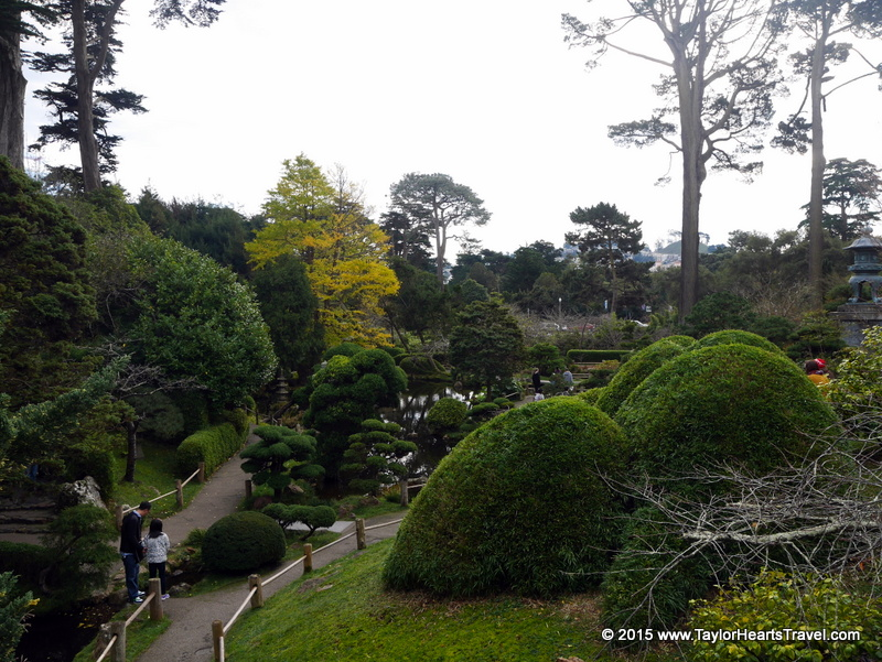 Review, Photos, Tips, Travel Blog, Taylor Hearts Travel, golden gate park san Francisco, golden gate park map, golden gate bridge facts, golden gate, golden gate park San Francisco, golden gate park, Japanese Tea Garden