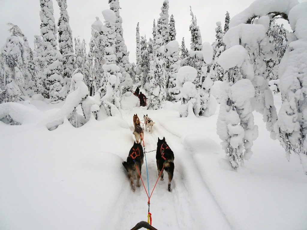 Lapland, Finland, Christmas, Family Travel, Best Family Holidays, Family Holiday destinations